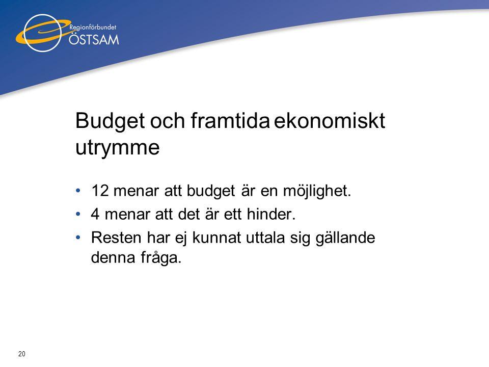 Budget och framtida ekonomiskt utrymme