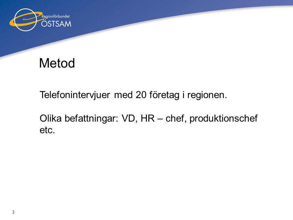 Metod Telefonintervjuer med 20 företag i regionen.
