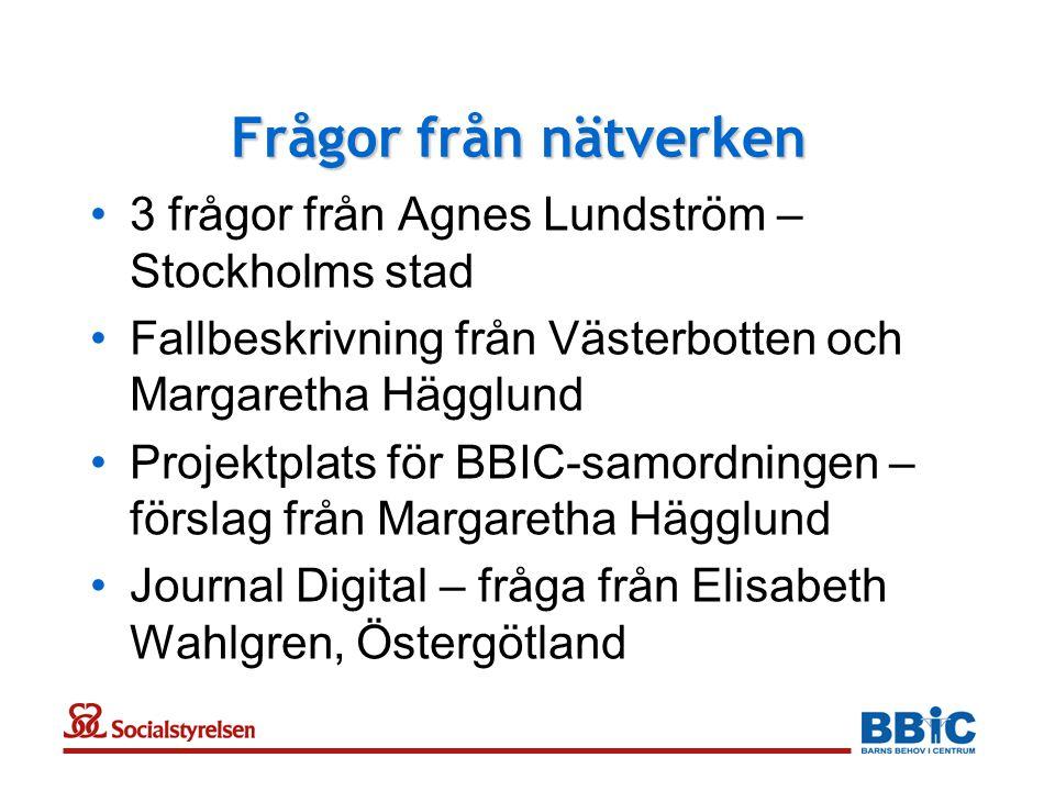 Frågor från nätverken 3 frågor från Agnes Lundström – Stockholms stad