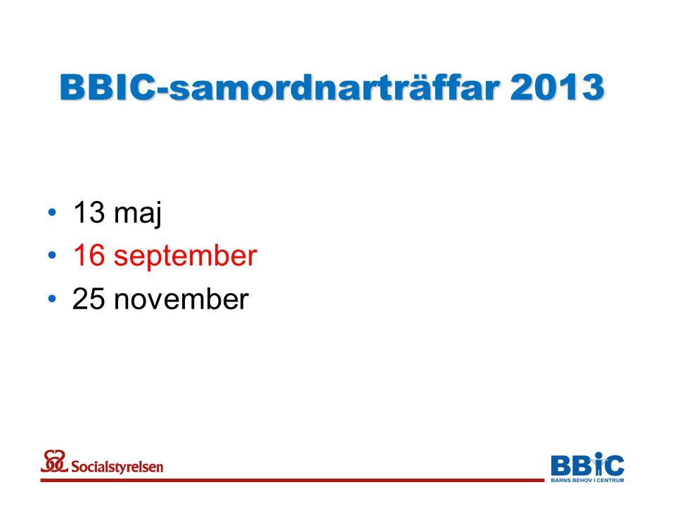 BBIC-samordnarträffar 2013