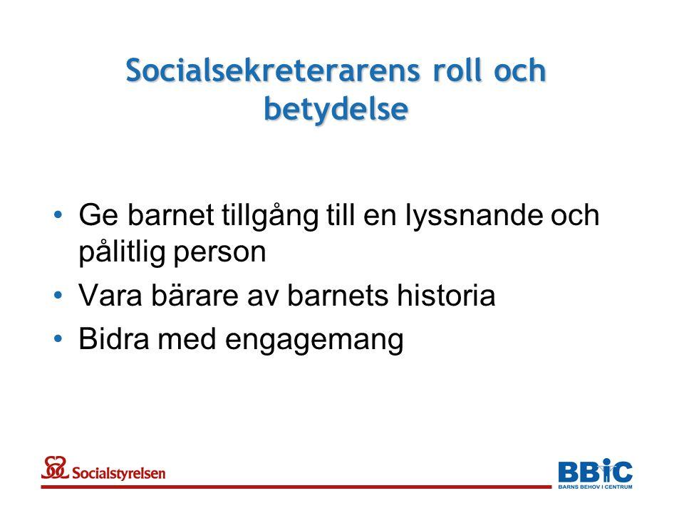 Socialsekreterarens roll och betydelse