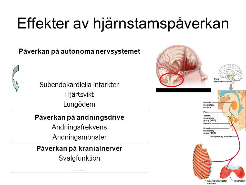 Effekter av hjärnstamspåverkan