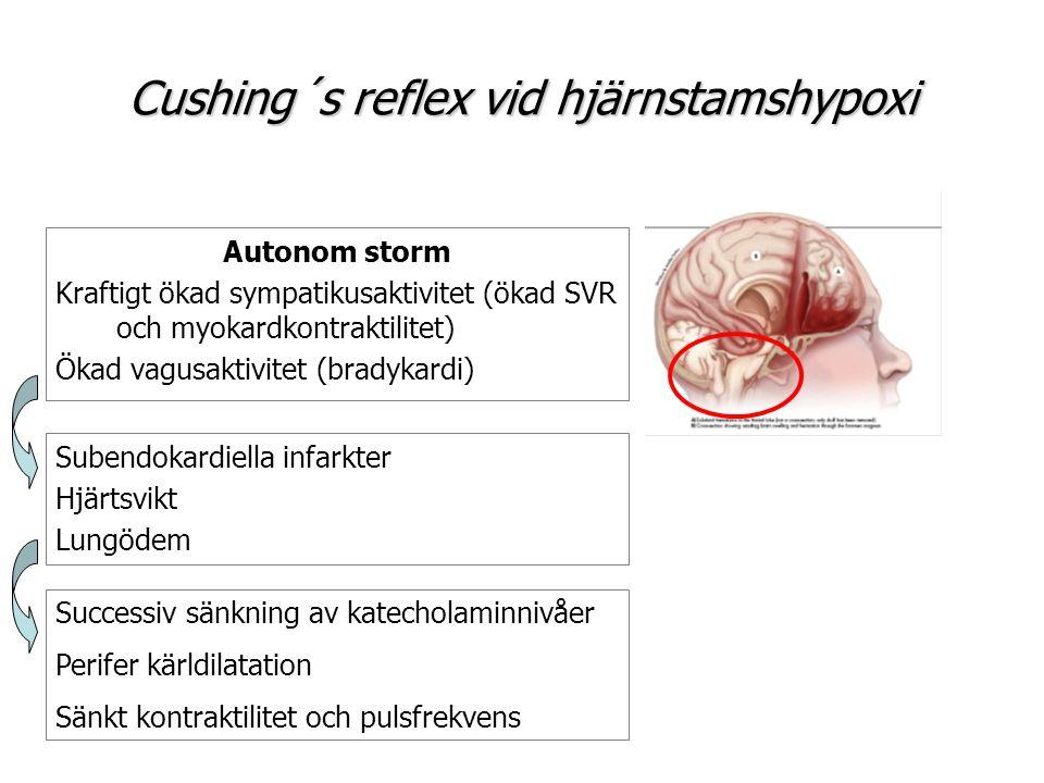 Cushing´s reflex vid hjärnstamshypoxi