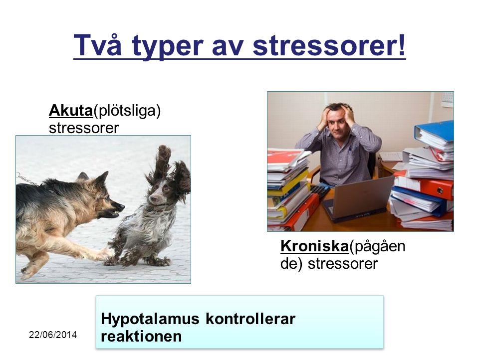 Två typer av stressorer!