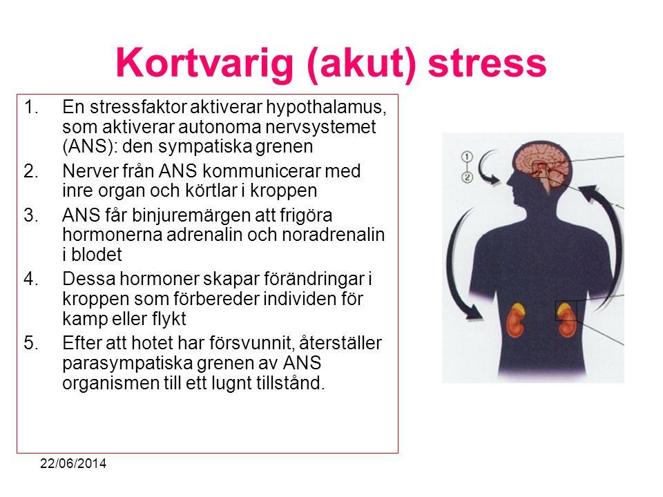 Kortvarig (akut) stress