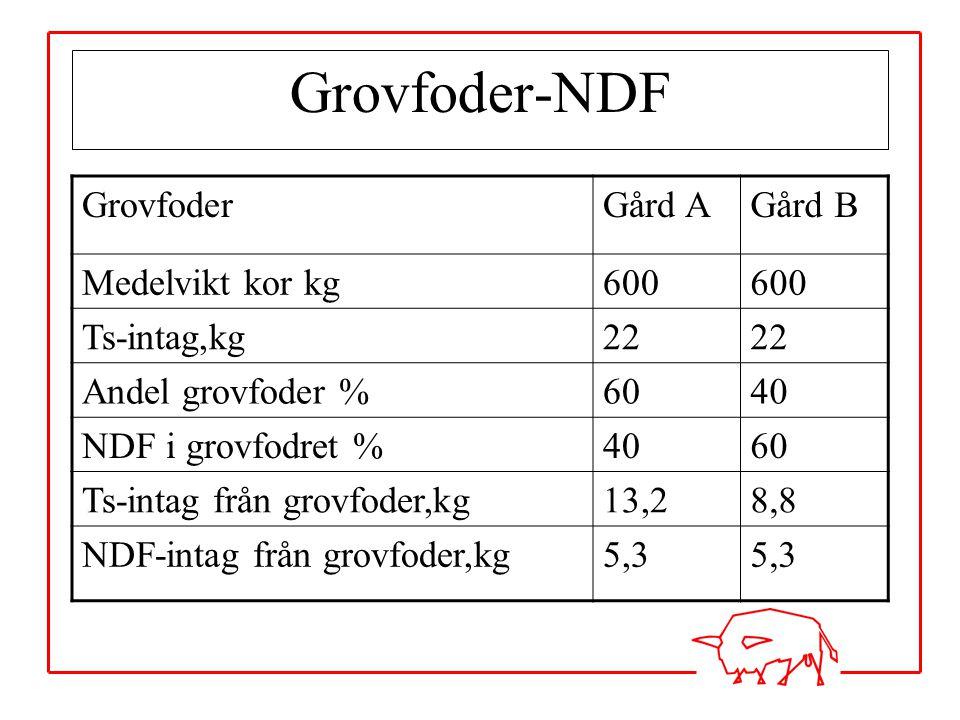 Grovfoder-NDF Grovfoder Gård A Gård B Medelvikt kor kg 600 Ts-intag,kg