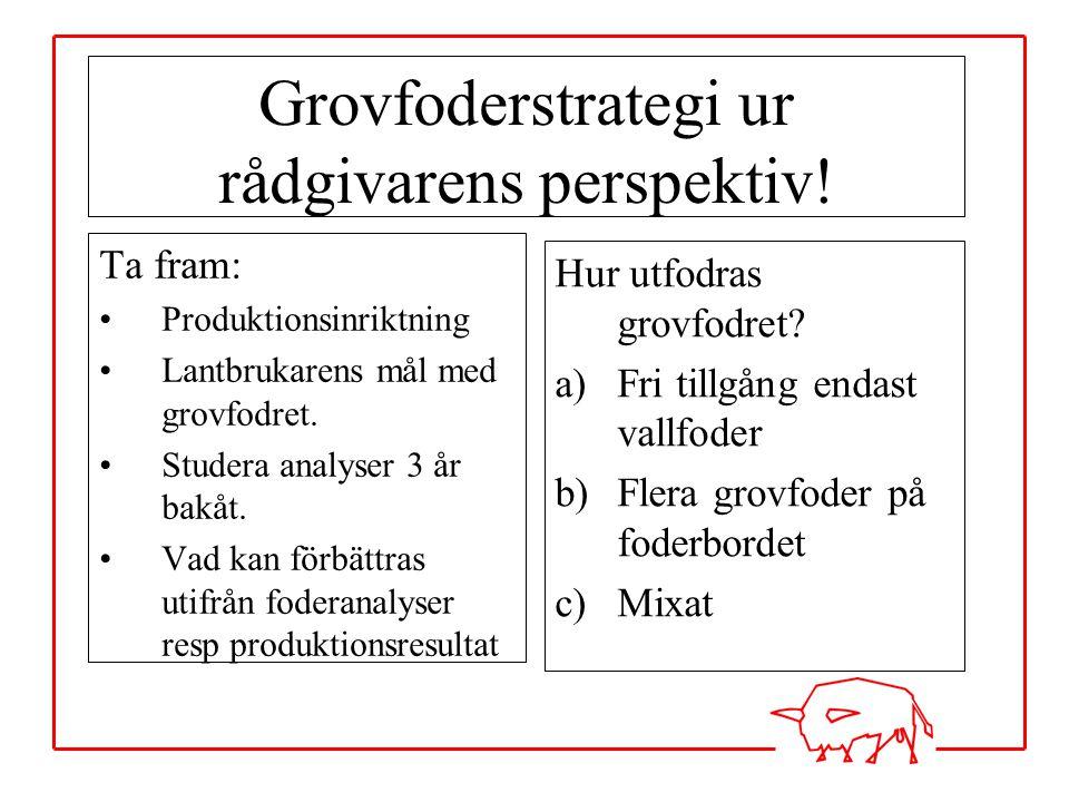 Grovfoderstrategi ur rådgivarens perspektiv!