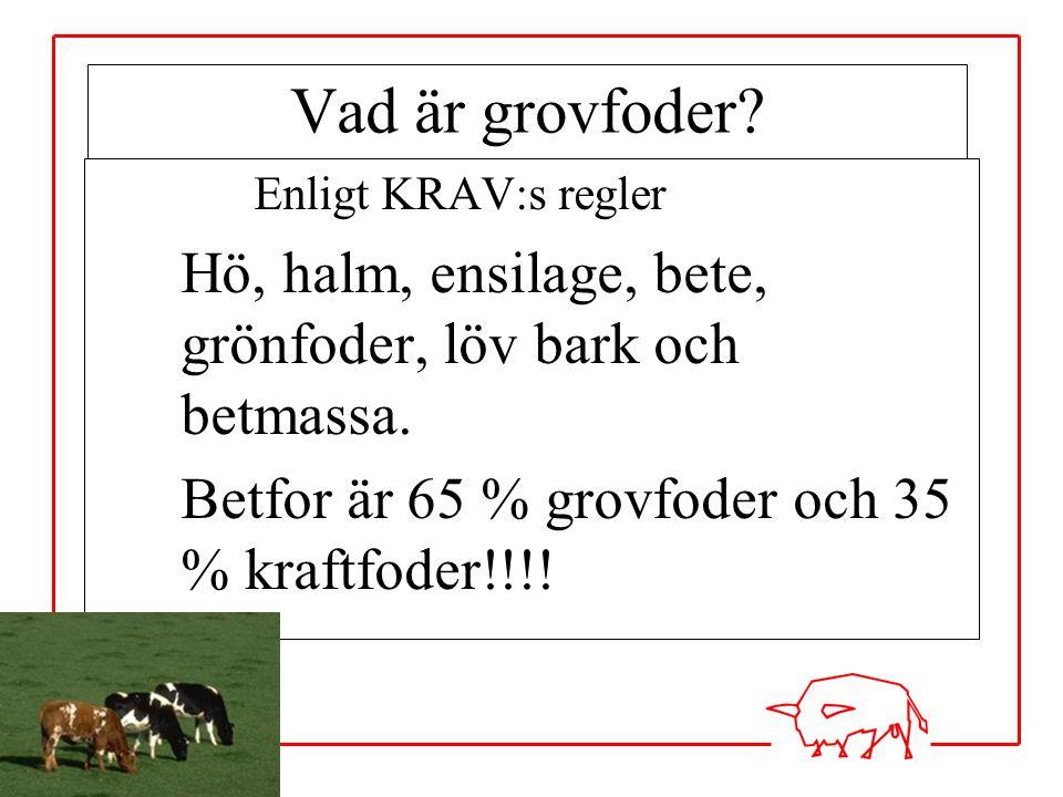 Vad är grovfoder Enligt KRAV:s regler. Hö, halm, ensilage, bete, grönfoder, löv bark och betmassa.