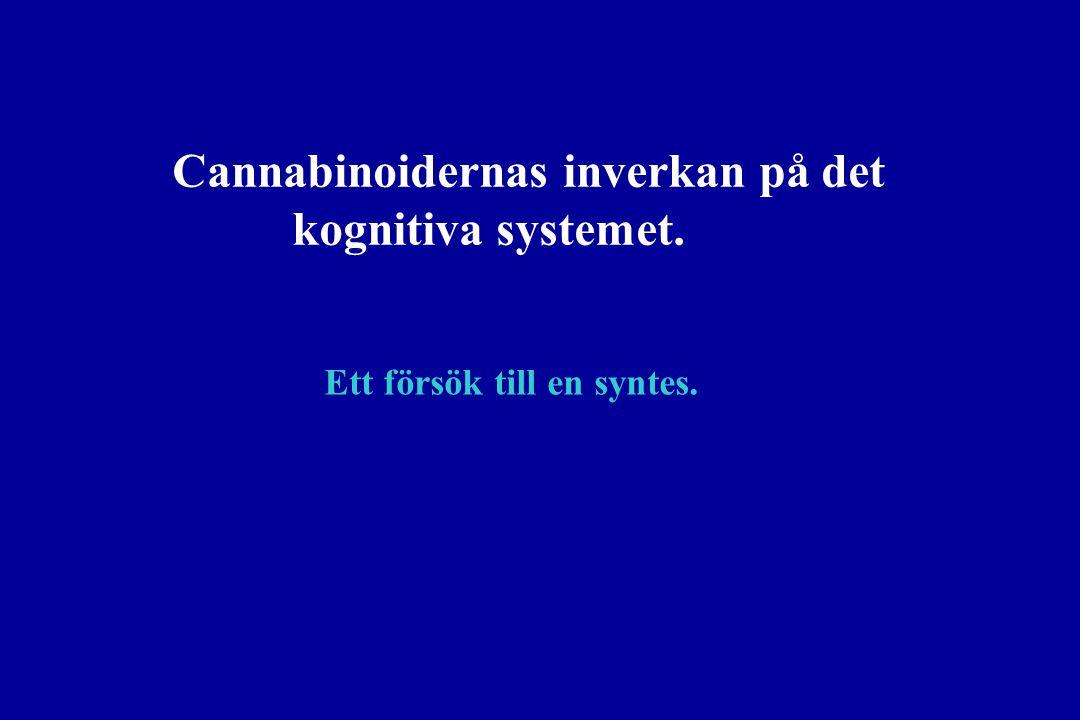 Cannabinoidernas inverkan på det kognitiva systemet.