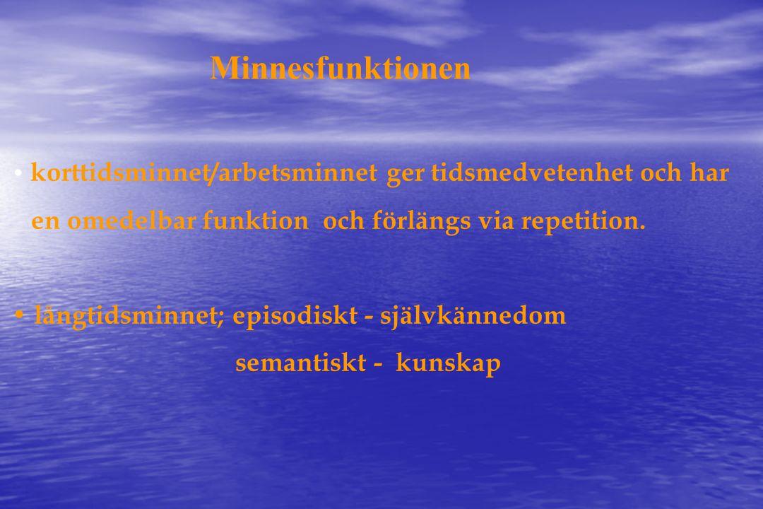 Minnesfunktionen en omedelbar funktion och förlängs via repetition.