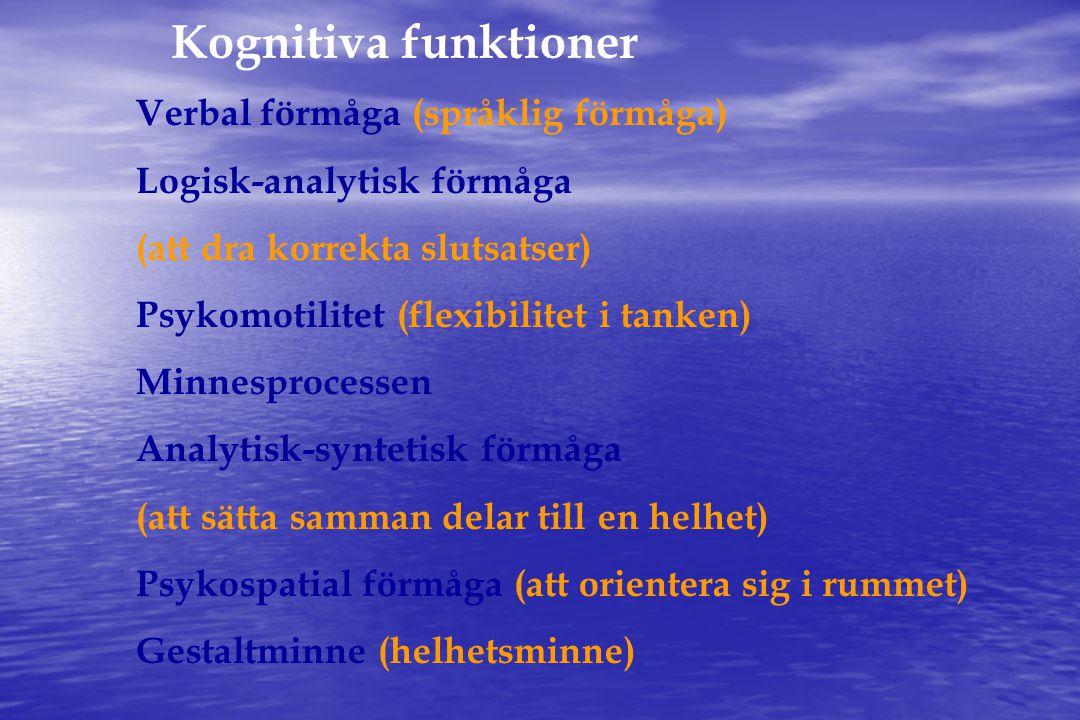 Kognitiva funktioner Verbal förmåga (språklig förmåga)