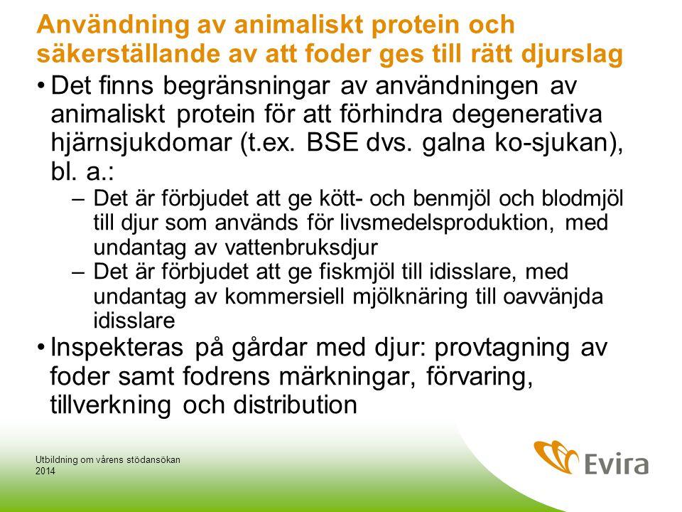 Användning av animaliskt protein och säkerställande av att foder ges till rätt djurslag