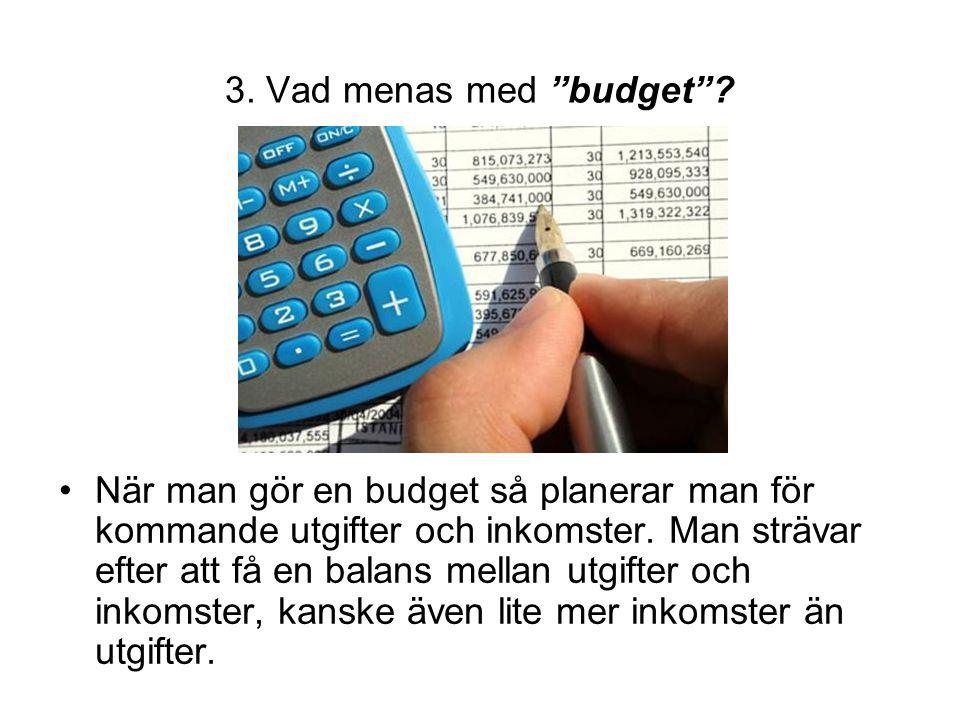 3. Vad menas med budget