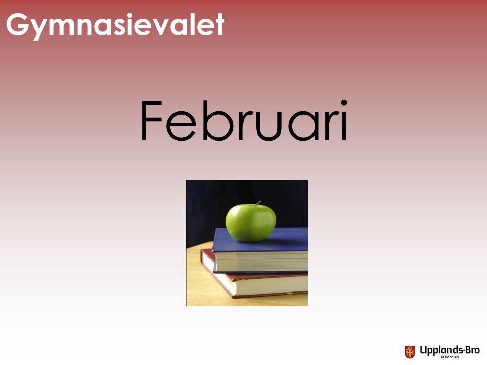 Gymnasievalet Februari