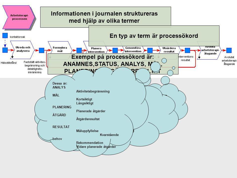 Informationen i journalen struktureras med hjälp av olika termer
