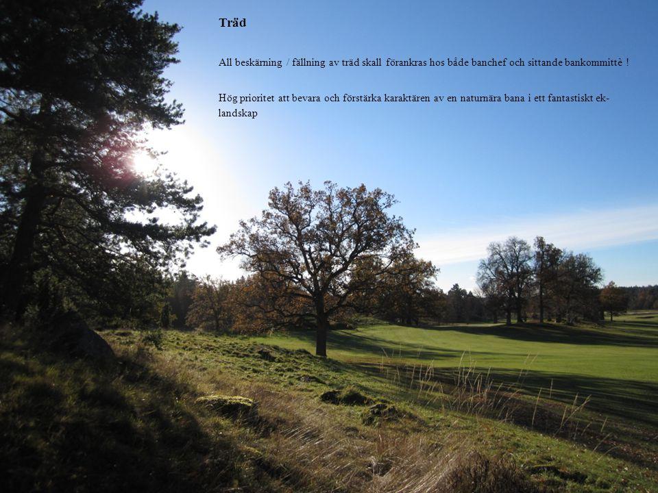Träd All beskärning / fällning av träd skall förankras hos både banchef och sittande bankommittè !
