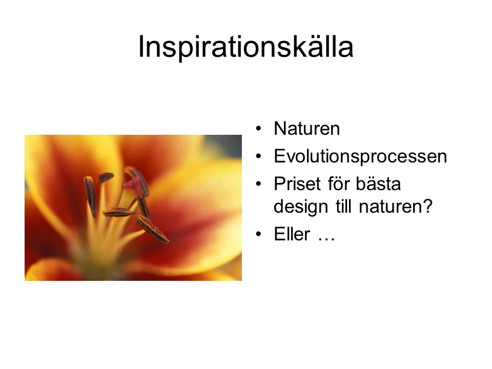 Inspirationskälla Naturen Evolutionsprocessen