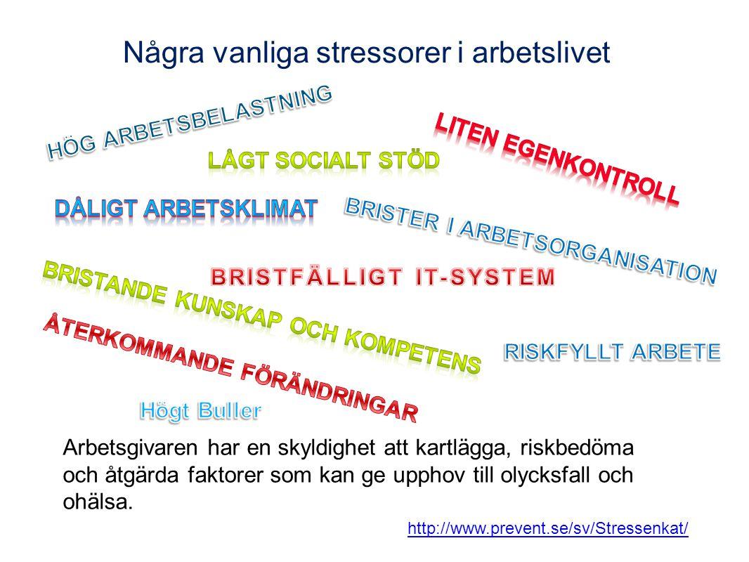 Några vanliga stressorer i arbetslivet