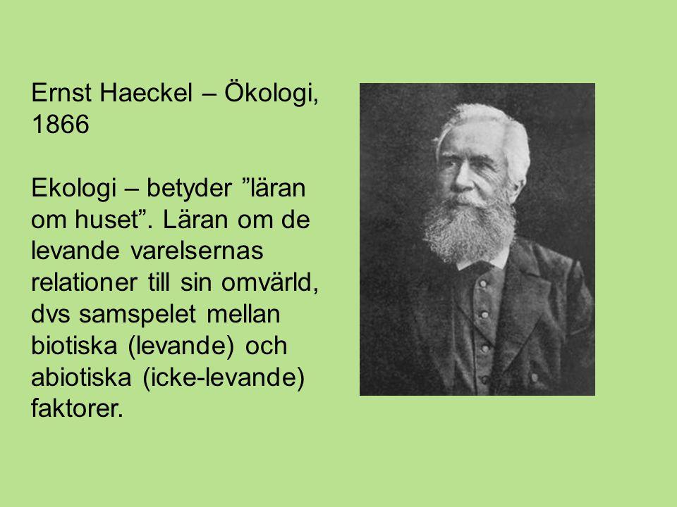 Ernst Haeckel – Ökologi, 1866