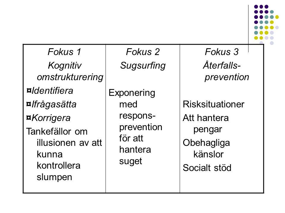 Kognitiv omstrukturering ¤Identifiera ¤Ifrågasätta ¤Korrigera