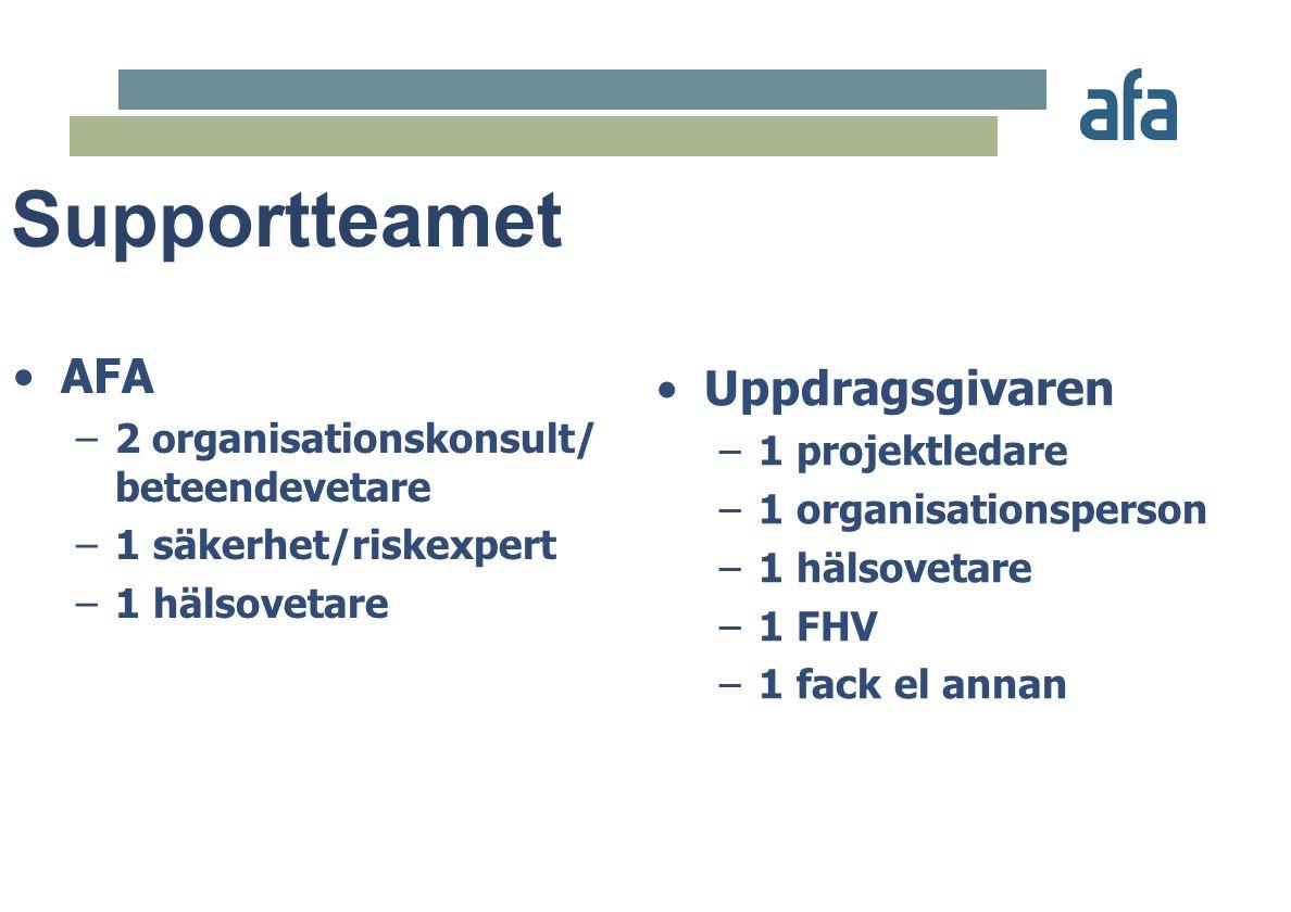 Supportteamet Uppdragsgivaren AFA 1 projektledare
