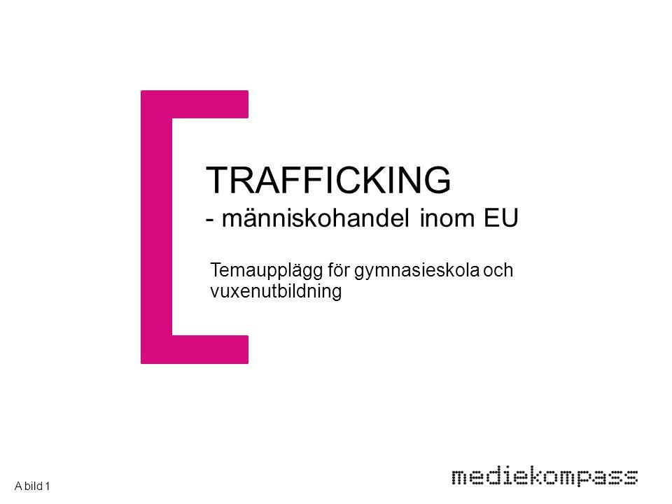 TRAFFICKING - människohandel inom EU