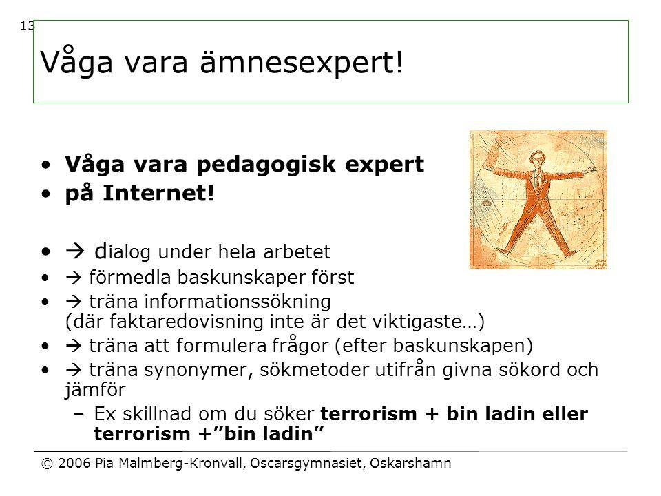 Våga vara ämnesexpert! Våga vara pedagogisk expert på Internet!