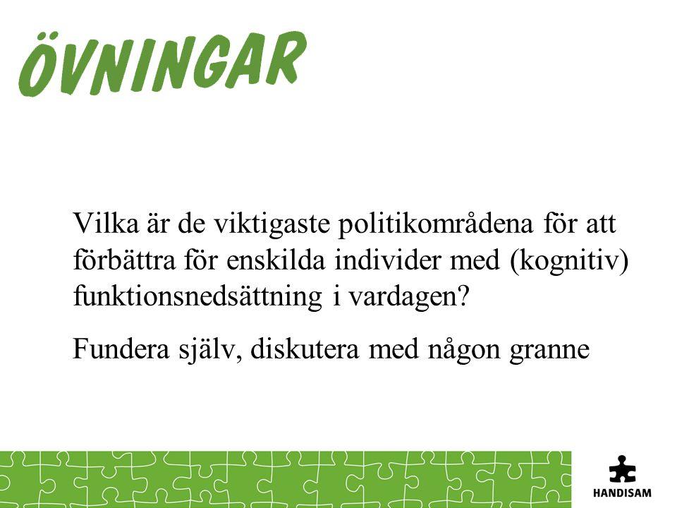 Vilka är de viktigaste politikområdena för att förbättra för enskilda individer med (kognitiv) funktionsnedsättning i vardagen.