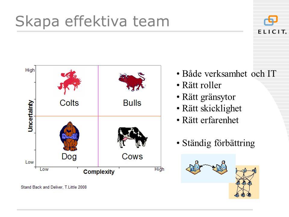 Skapa effektiva team Både verksamhet och IT Rätt roller Rätt gränsytor