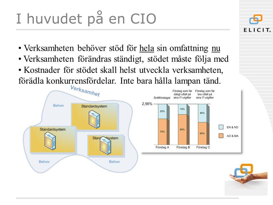 I huvudet på en CIO Verksamheten behöver stöd för hela sin omfattning nu. Verksamheten förändras ständigt, stödet måste följa med.