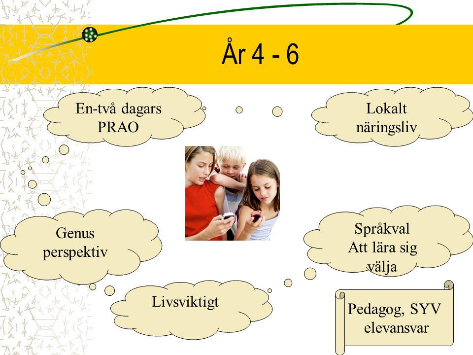 År 4 - 6 En-två dagars PRAO Lokalt näringsliv Språkval