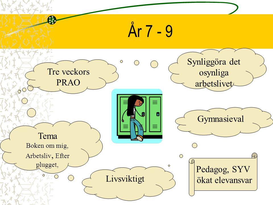 År 7 - 9 Synliggöra det osynliga arbetslivet Tre veckors PRAO