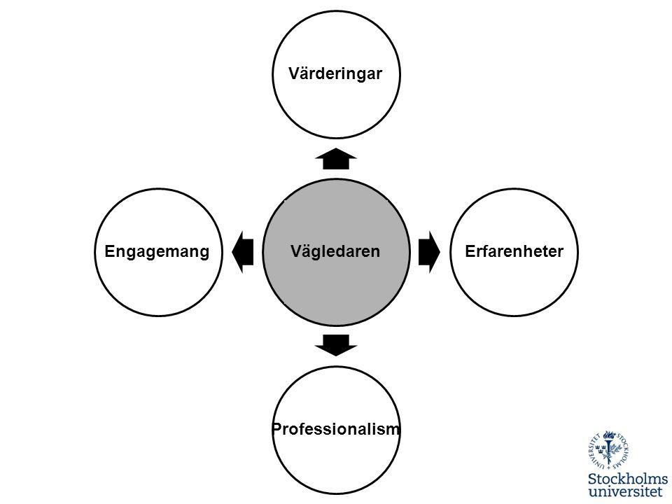 Värderingar Vägledaren Engagemang Erfarenheter Professionalism