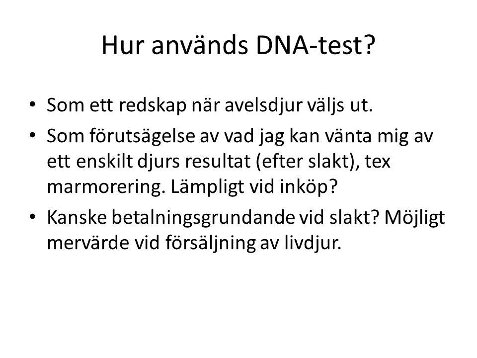 Hur används DNA-test Som ett redskap när avelsdjur väljs ut.