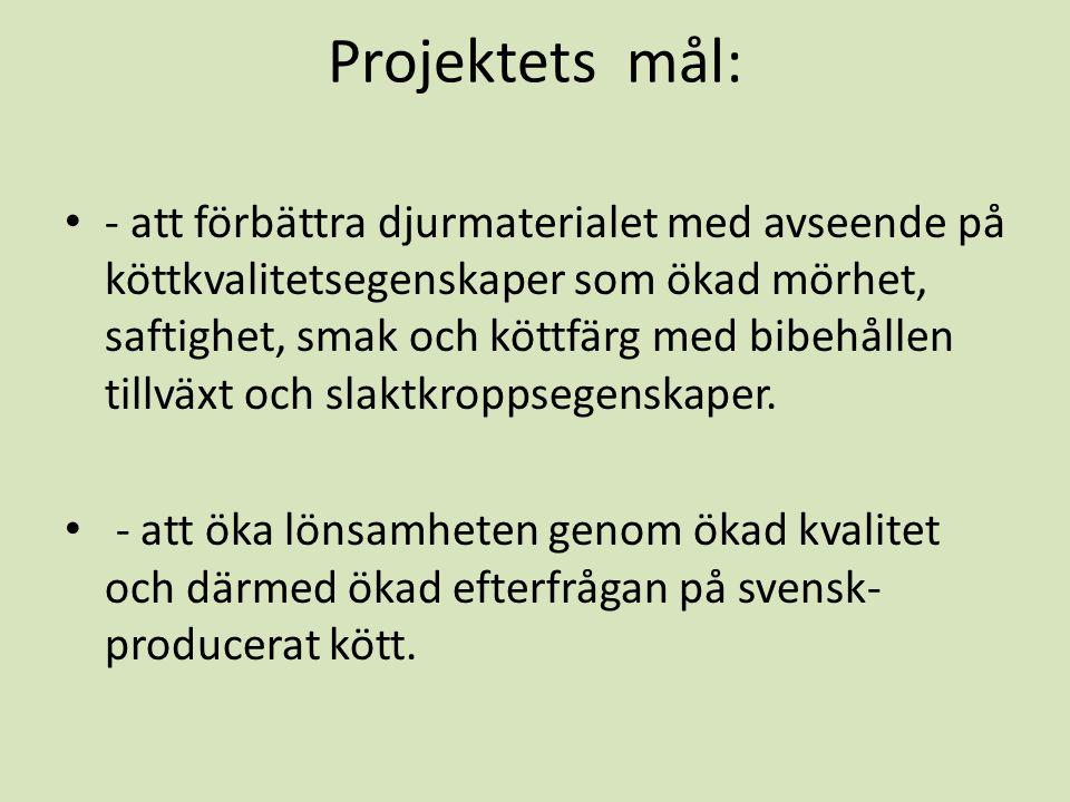 Projektets mål: