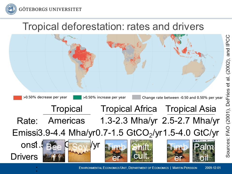 Tropical deforestation: rates and drivers