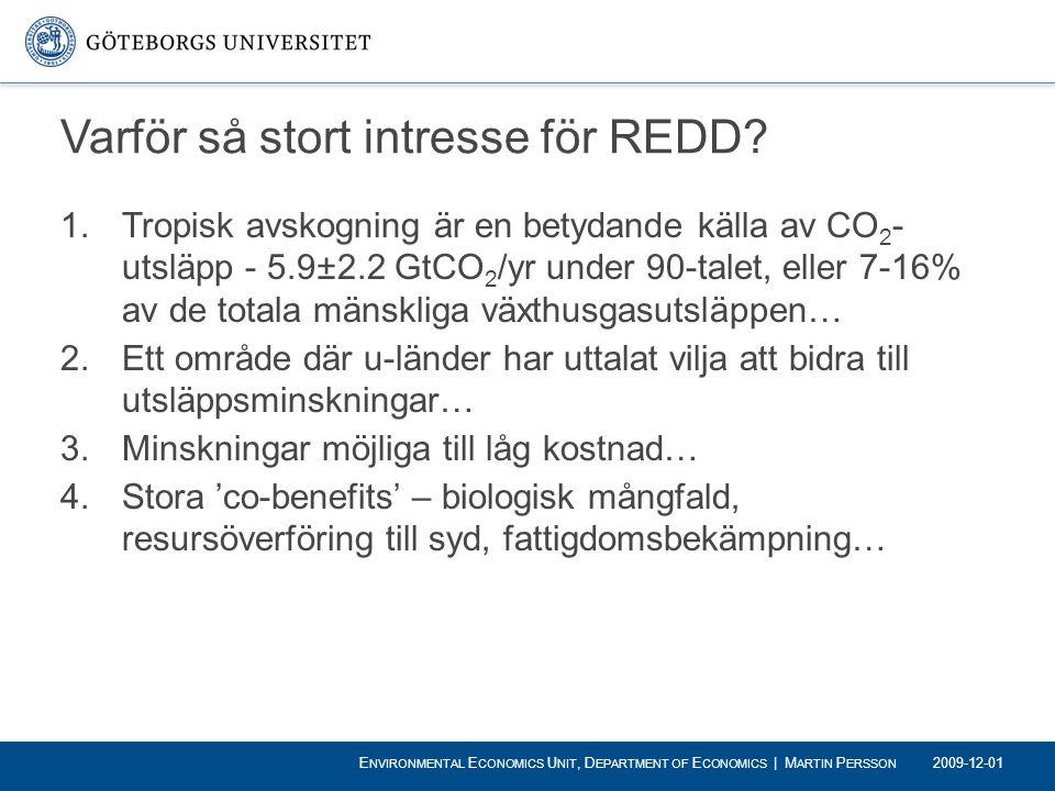 Varför så stort intresse för REDD
