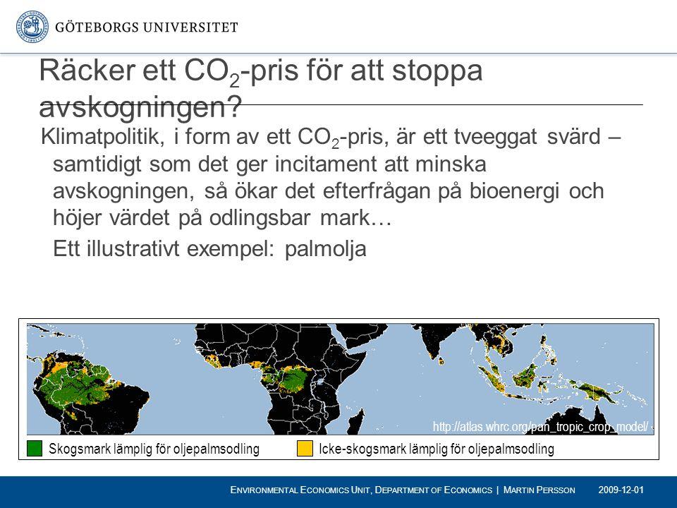 Räcker ett CO2-pris för att stoppa avskogningen