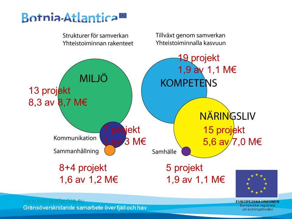 19 projekt 1,9 av 1,1 M€ 13 projekt 8,3 av 8,7 M€ 7 projekt 3 av 3 M€