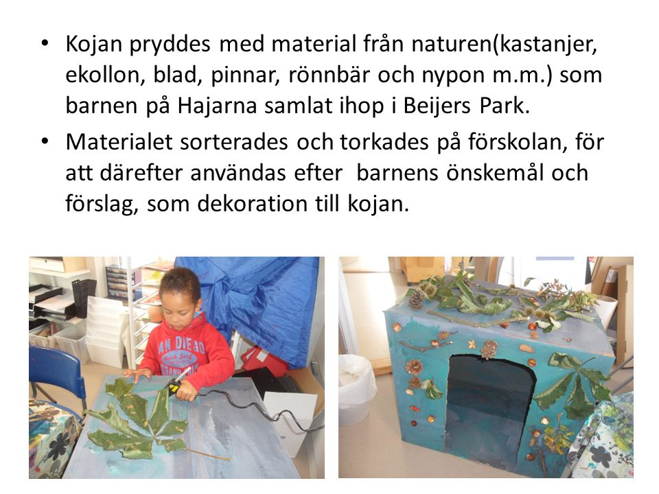 Kojan pryddes med material från naturen(kastanjer, ekollon, blad, pinnar, rönnbär och nypon m.m.) som barnen på Hajarna samlat ihop i Beijers Park.