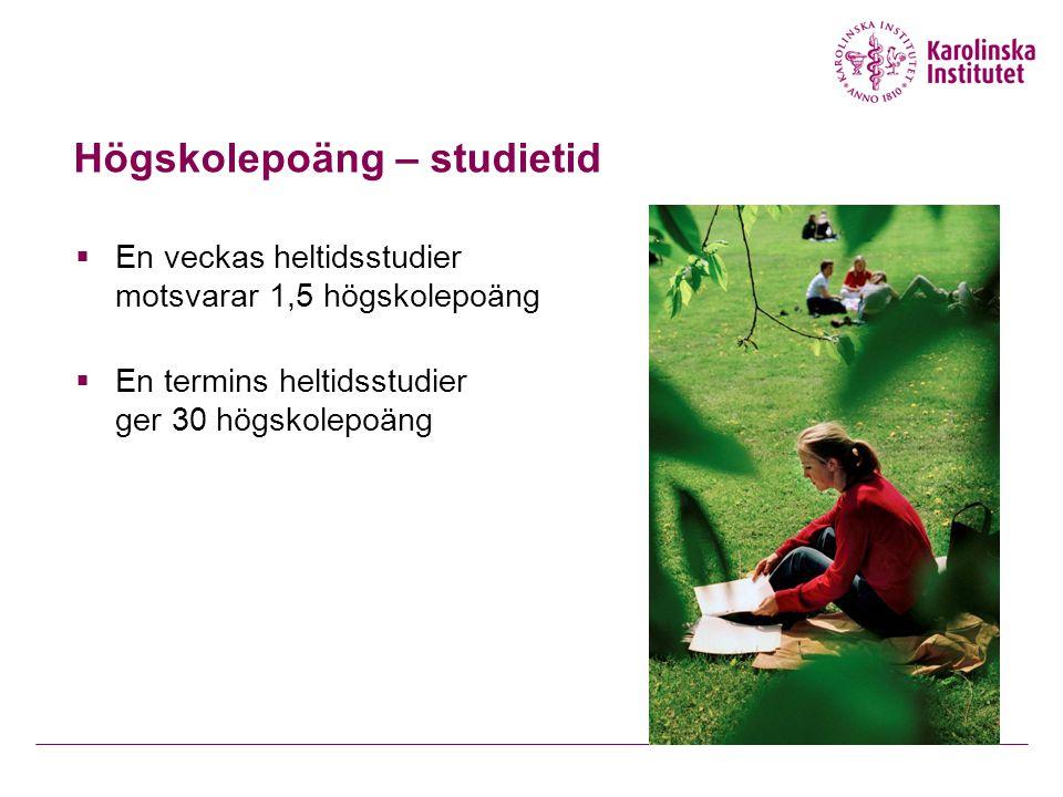 Högskolepoäng – studietid