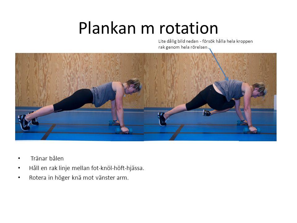 Plankan m rotation Tränar bålen