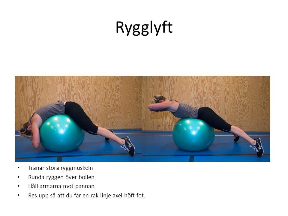 Rygglyft Tränar stora ryggmuskeln Runda ryggen över bollen