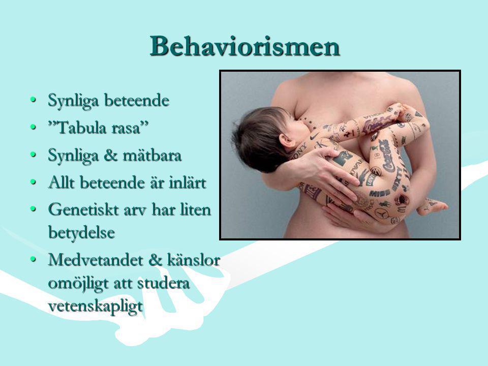 Behaviorismen Synliga beteende Tabula rasa Synliga & mätbara