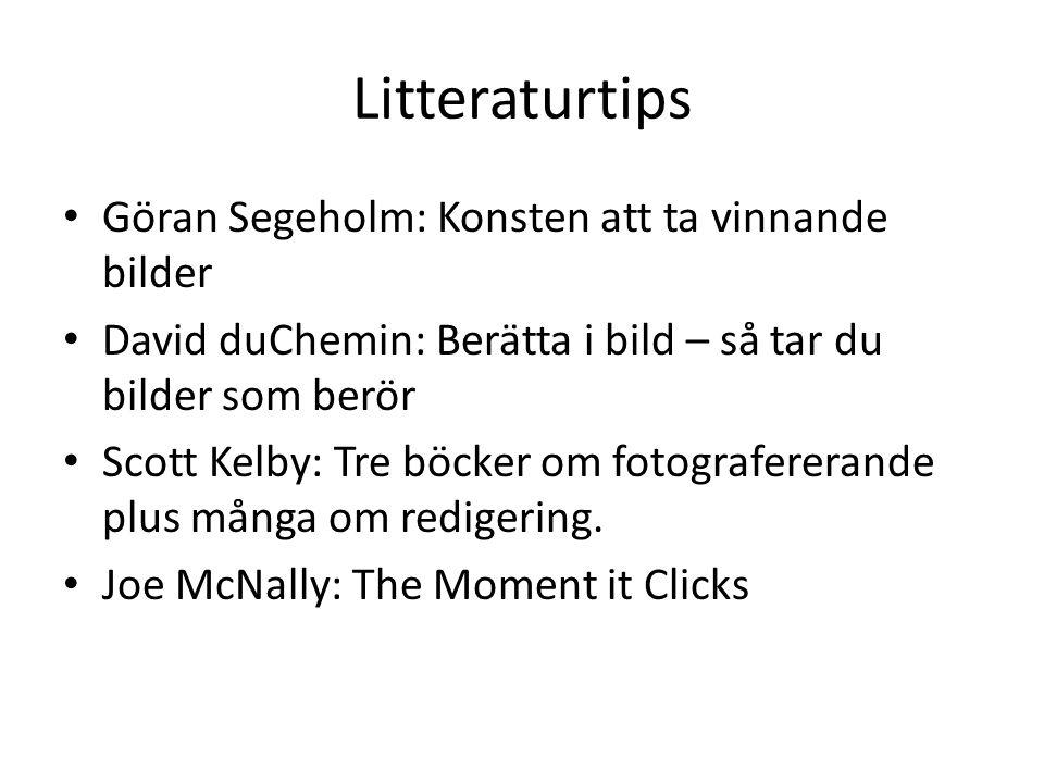 Litteraturtips Göran Segeholm: Konsten att ta vinnande bilder