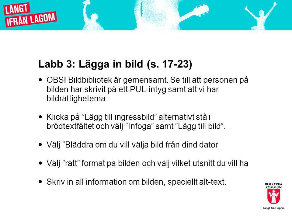 Labb 3: Lägga in bild (s. 17-23)