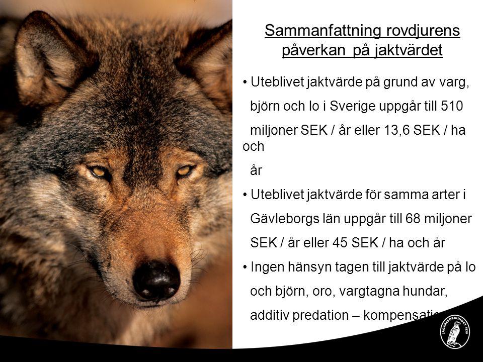 Sammanfattning rovdjurens påverkan på jaktvärdet