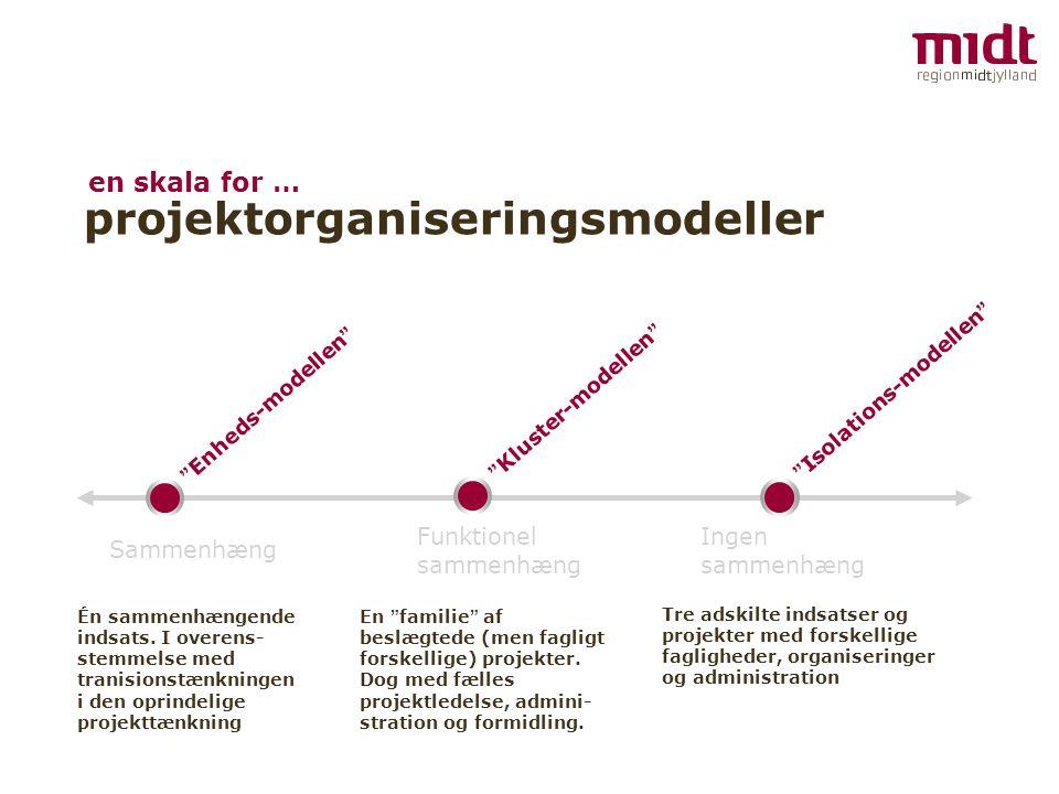 projektorganiseringsmodeller