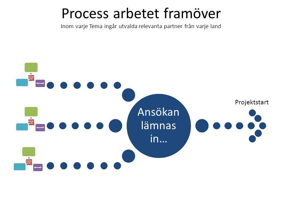 Process arbetet framöver Inom varje Tema ingår utvalda relevanta partner från varje land