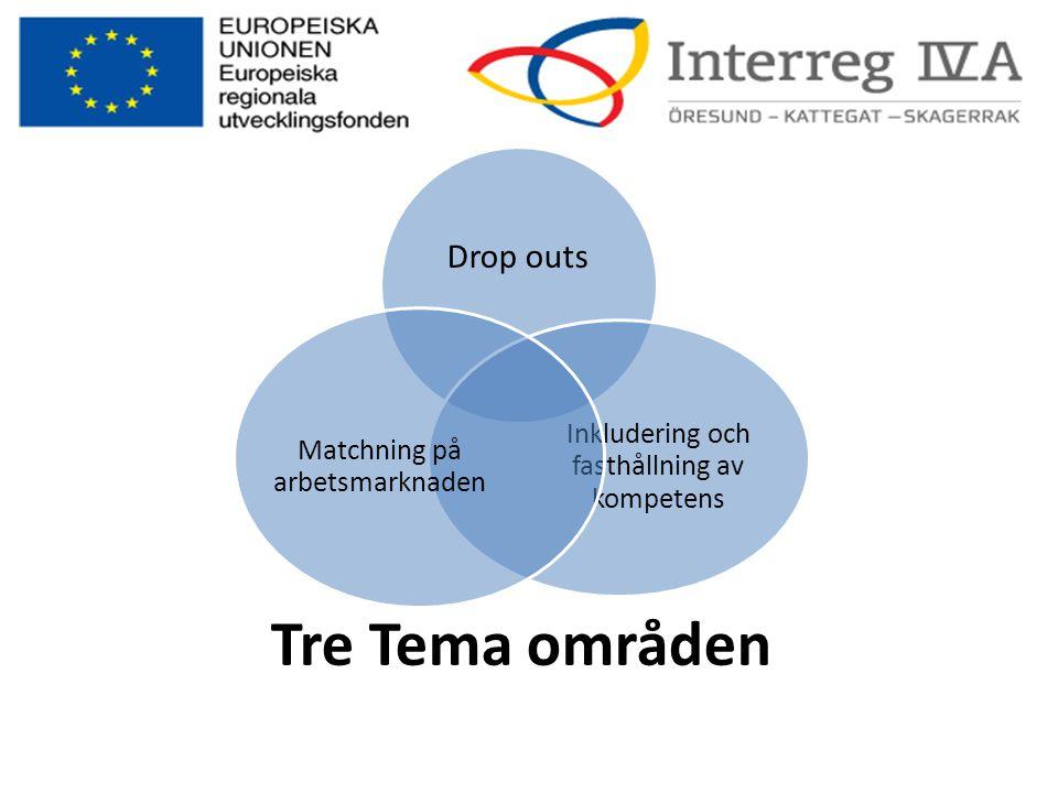 Tre Tema områden Drop outs Matchning på arbetsmarknaden
